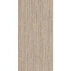 Feinsteinzeug 45 x 90 cm Evolution Beige